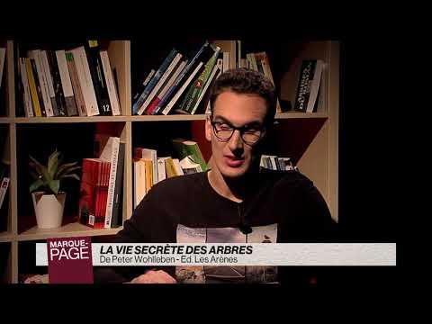 Vidéo de Peter Wohlleben