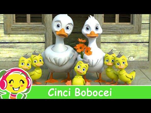 Cinci Bobocei - Cantece pentru copii cu ratuste