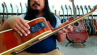 Toko jual gitar akustik elektrik tuner murah se indonesia yamaha Ibanez fender Cort taylor lakewood
