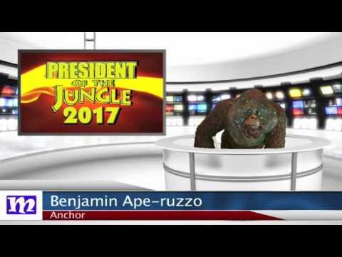President of the Jungle 2017   MMNN Newsbreak   Many Miniatures Theater