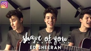 Shawn Mendes - Shape of You cover