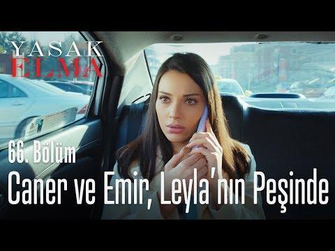 Caner ve Emir, Leyla'yı takipteler! - Yasak Elma 66. Bölüm