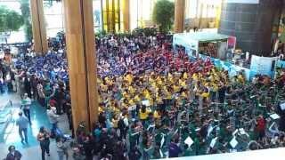 Maior orquestra de violas em concerto no Dolce Vita no Porto_O malhão , Tradicional