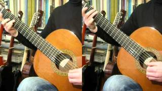 Waltz from The Sleeping Beauty - Tchaikovsky (Guitar duet)