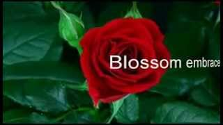 Blossom embrace change allow transition
