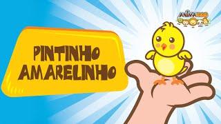 Canções Infantis - Animazoo - Pintinho Amarelinho