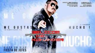 EL KOMANDER- ME GUSTAS MUCHO (EN VIVO 2012) FIESTA DE JEFES