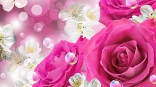 ♥ Belles Roses ♥ Musique Instrumentale