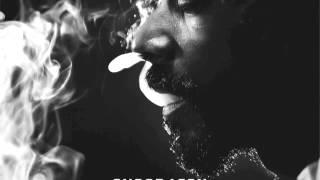Snoop Lion - Torn Apart feat. Rita Ora (Reincarnated)