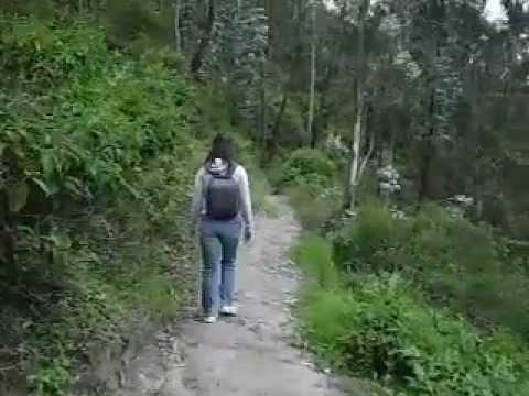 Peguche Falls Adventure