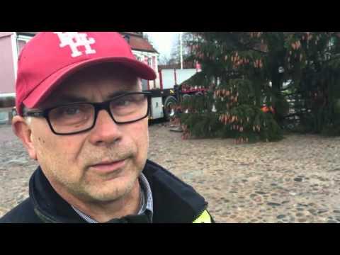 Alingsås Kommun - Årets julgran är på plats!