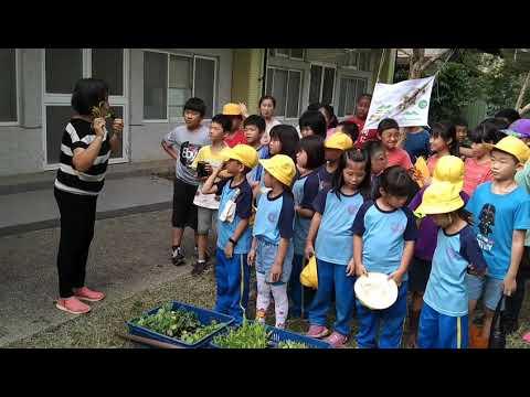 母語融入食農教育 - YouTube