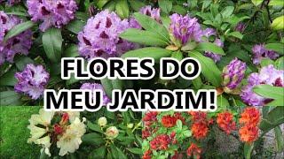 FLORES DO MEU JARDIM!