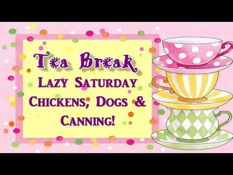 Tea Break Chickens,Dogs & Canning