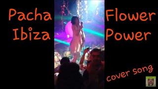 Pacha flower power cover