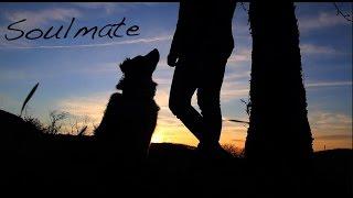 Soulmate | Kurzfilm