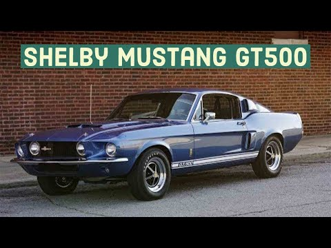 Vintage Shelby Mustang GT500