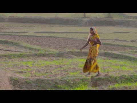 Vi hjælper kvinder i Indien med at kæmpe for deres rettigheder – IKEA Foundation og PRADAN