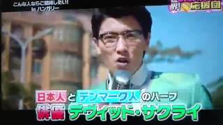 Liza, the Fox Fairy TV Tokyo