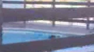 Miss t-shirt molhada piscina!