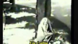 The Doors - Love Street TRADUÇÃO