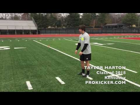 Taylor Harton, Ray Guy Prokicker.com Kicker Punter, Class of 2018
