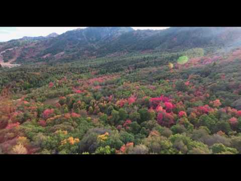 Fall Colors Drone Snowbasin 2016