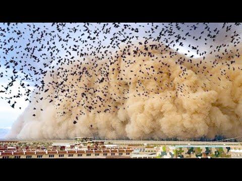 Самые Мощные и Пугающие Природные Явления, Заснятые на Камеру