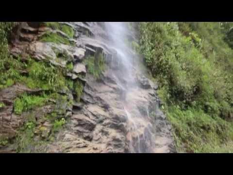 Ecuador: Jungle & Highlands