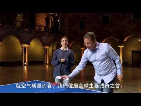 Stockholm Ping Pong - Chinese subtitles