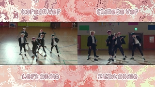 NCT DREAM - My First and Last (Korean Chinese MV Comparison)