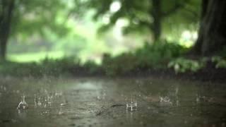 Mindful Minute -  Raindrops (Classroom, Studying, School Mental Break)