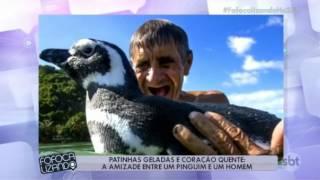 História do Pinguim