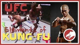Kung Fu in UFC (MUST WATCH!) width=