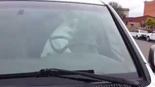 """Perro encerrado en un auto se """"cansa"""" y toca el claxon con sus patas"""