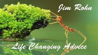 The Ant Philosophy - Jim Rohn