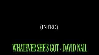 David Nail - Whatever She's Got (Karaoke) with words & Instrumental