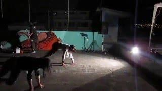 "KILLA FLY GIRLS feat D.A.D TWISTA - ""MUJERES DEL GHETTO"""
