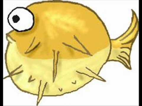 sto-zvirat-ryba-adush23