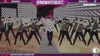 Gwen Stefani - Baby Don't Lie [Music Video] DJ Bigwhite Remix