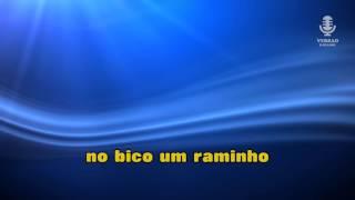 ♫ Karaoke SENHORA CEGONHA  - Zé Amaro