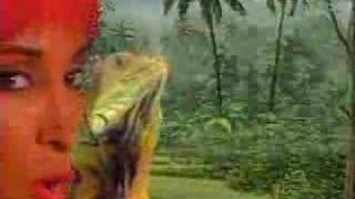 George Clinton & The Goombas- Walk The Dinosaur