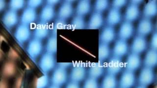 "David Gray - ""We're Not Right"""