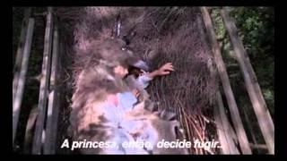 Princesa em Pele de Burro / Peau d'Ane (1970)