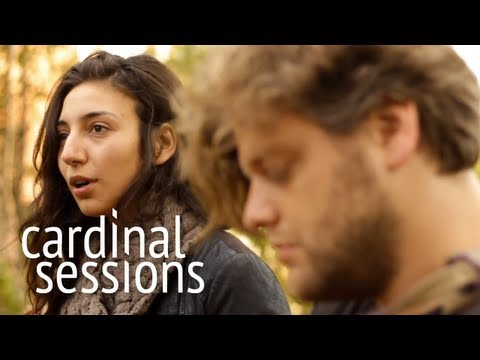 intergalactic-lovers-delay-cardinal-sessions-traumzeit-festival-special-cardinalsessions