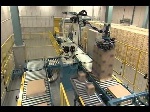 Koli paletleme paketleme otomasyonu makinesi robotu tara robotik