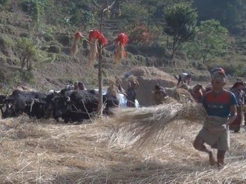 Father-Son Self-Guided Himalaya Trek – Annapurna Circuit (5-18)