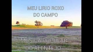 TRIO GUADIANA/ MEU LIRIO ROXO DO CAMPO/ MUSICA POPULAR DO ALENTEJO.