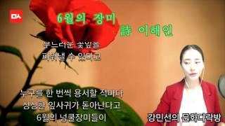 [밑줄긋는여자] 6월의 장미 - 이해인