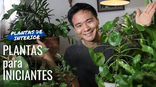 6 PLANTAS recomendadas para INICIANTES